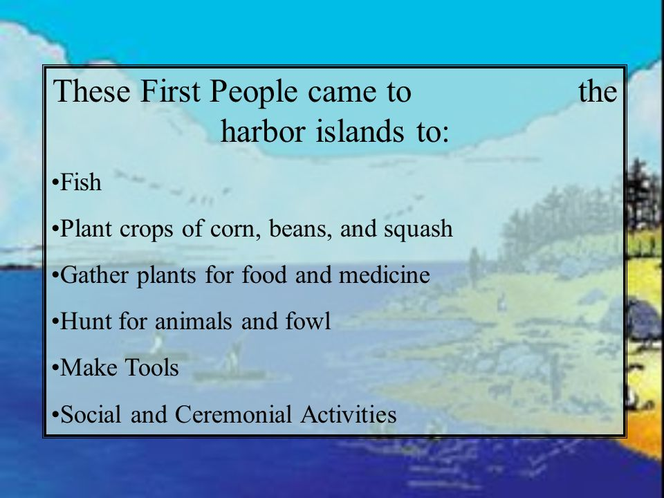 These First People came to the harbor islands to: Fish Plant crops of corn, beans, and squash Gather plants for food and medicine Hunt for animals and fowl Make Tools Social and Ceremonial Activities