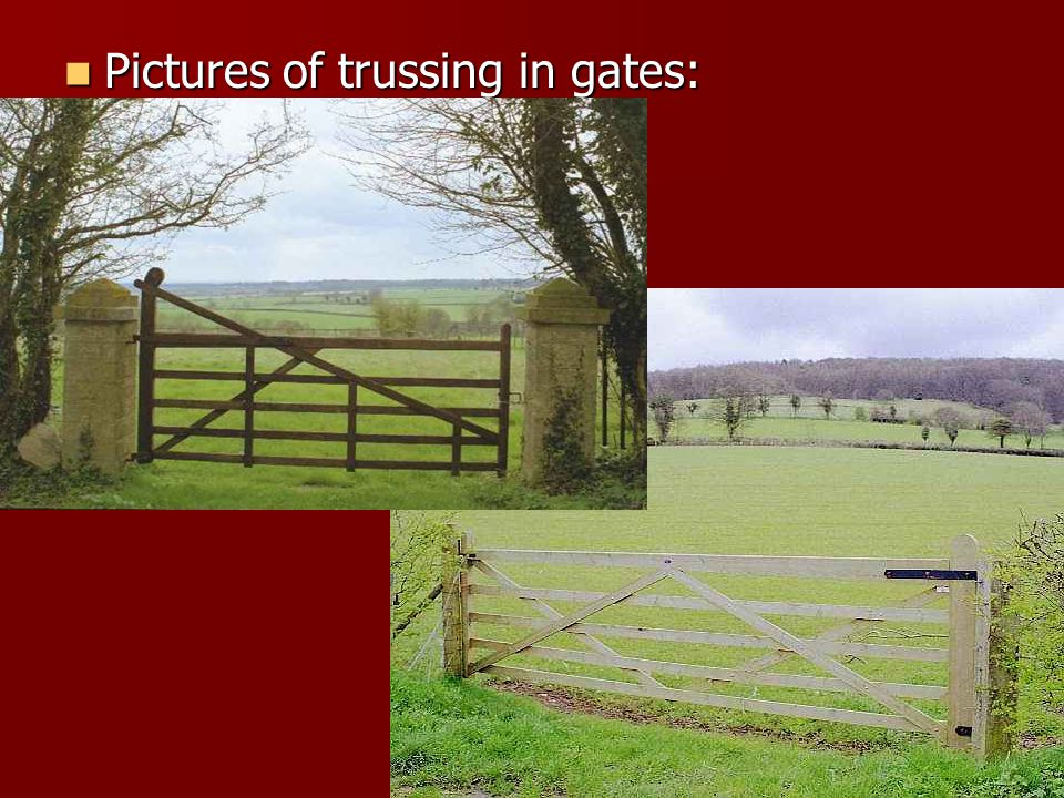 Pictures of trussing in gates: Pictures of trussing in gates: