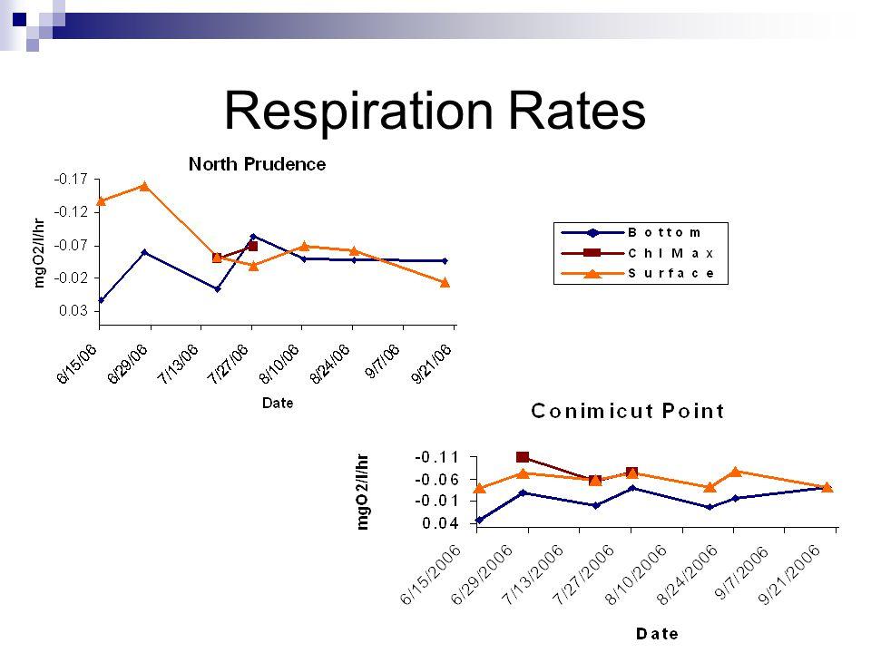Respiration Rates