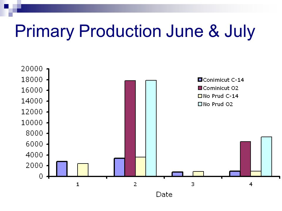 Primary Production June & July