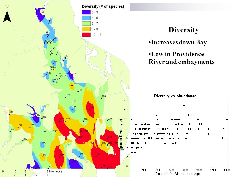 Diversity Increases down Bay Low in Providence River and embayments