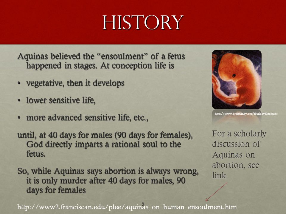 History Aquinas believed the ensoulment of a fetus happened in stages.