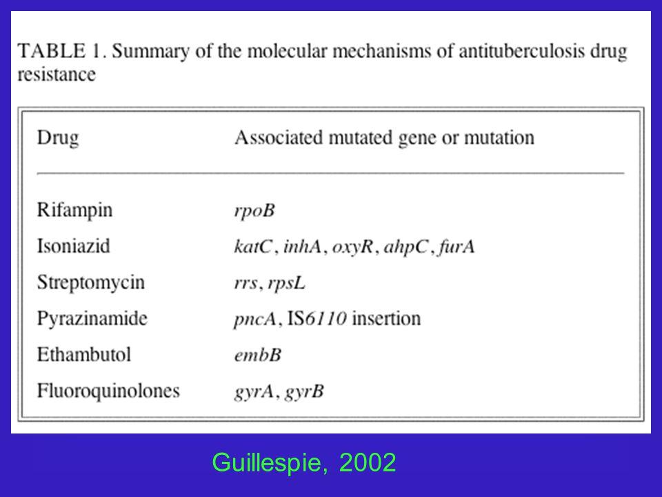 Guillespie, 2002