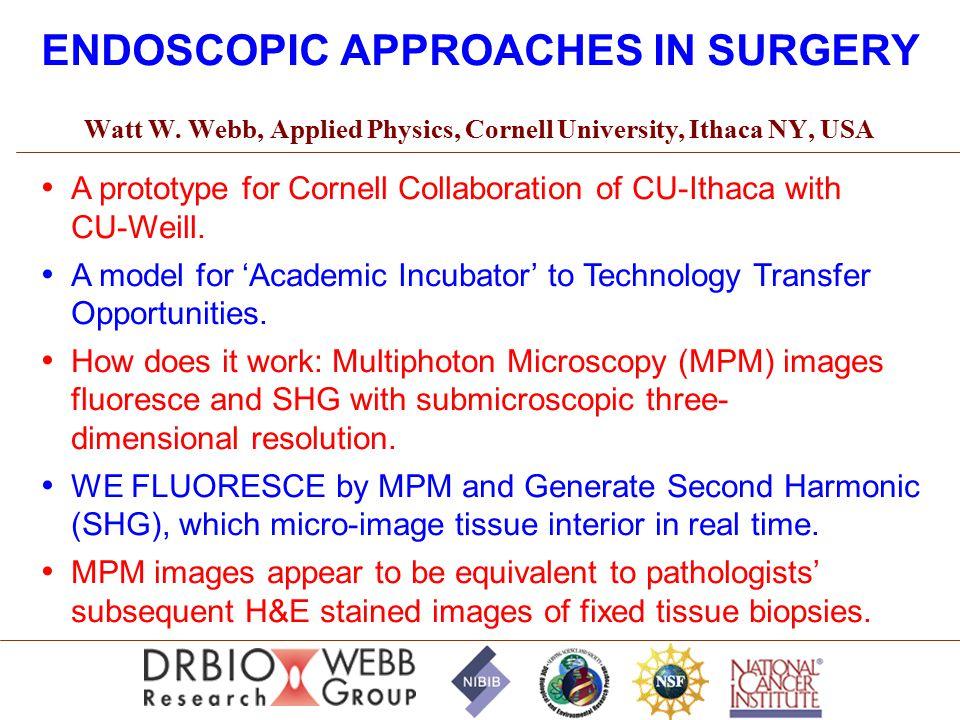ENDOSCOPIC APPROACHES IN SURGERY Watt W.