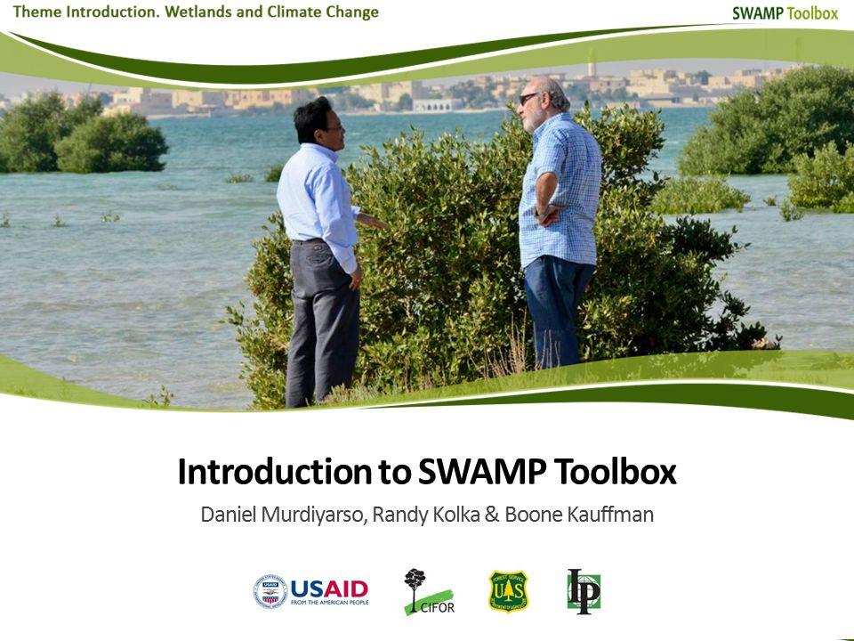 Introduction to SWAMP Toolbox Daniel Murdiyarso, Randy Kolka & Boone Kauffman