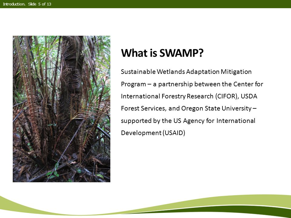 What is SWAMP? Sustainable Wetlands Adaptation Mitigation Program – a partnership between the Center for International Forestry Research (CIFOR), USDA