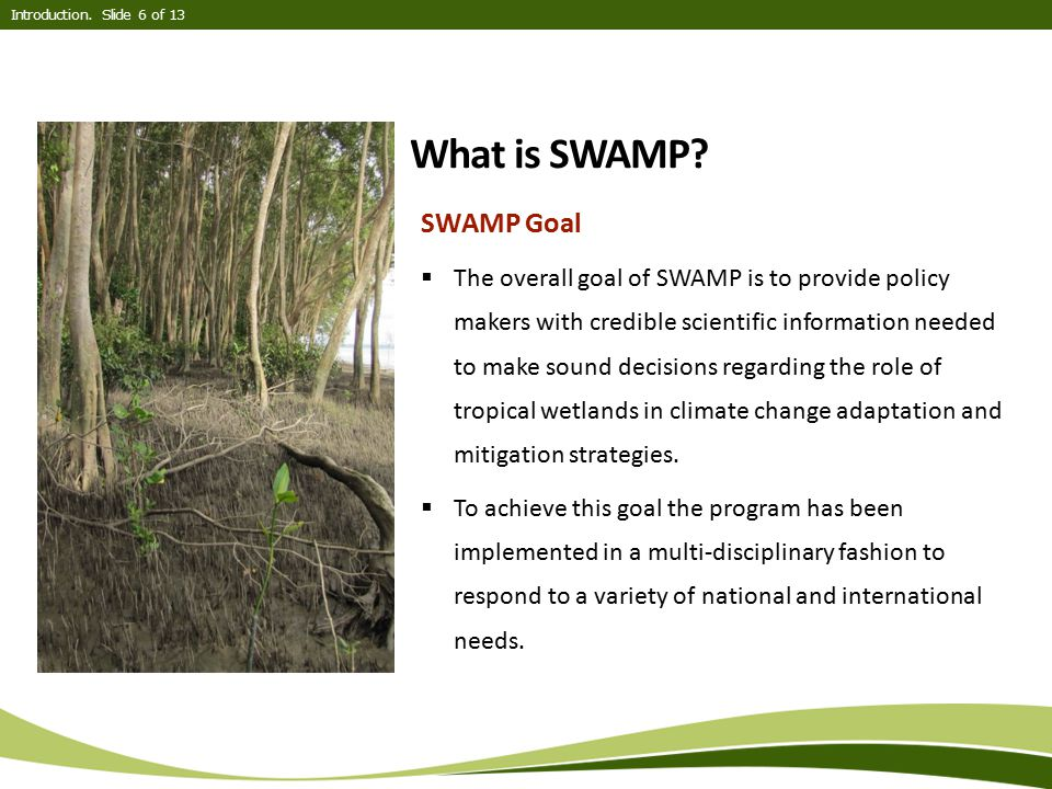 What is SWAMP? SWAMP Goal  The overall goal of SWAMP is to provide policy makers with credible scientific information needed to make sound decisions