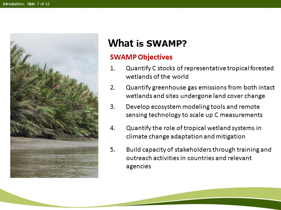 What is SWAMP? SWAMP Objectives 1.Quantify C stocks of representative tropical forested wetlands of the world 2.Quantify greenhouse gas emissions from