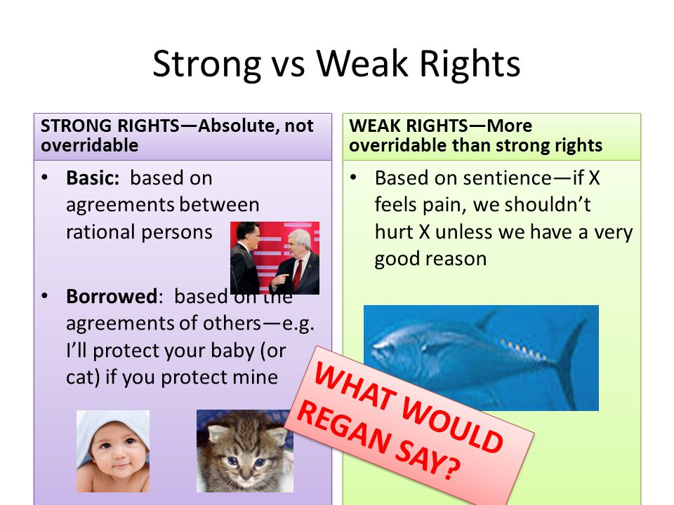 Strong vs Weak Rights STRONG RIGHTS—Absolute, not overridable Basic: based on agreements between rational persons Borrowed: based on the agreements of others—e.g.