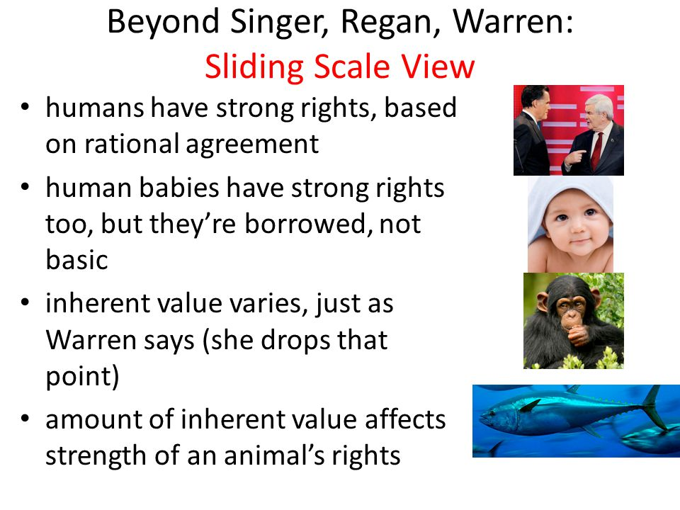 Green Animal Rescue: often sliding scale chimpanzees elephants whales dolphins see movie my book -- Animalkind: What We Owe to Animals (at amazon)