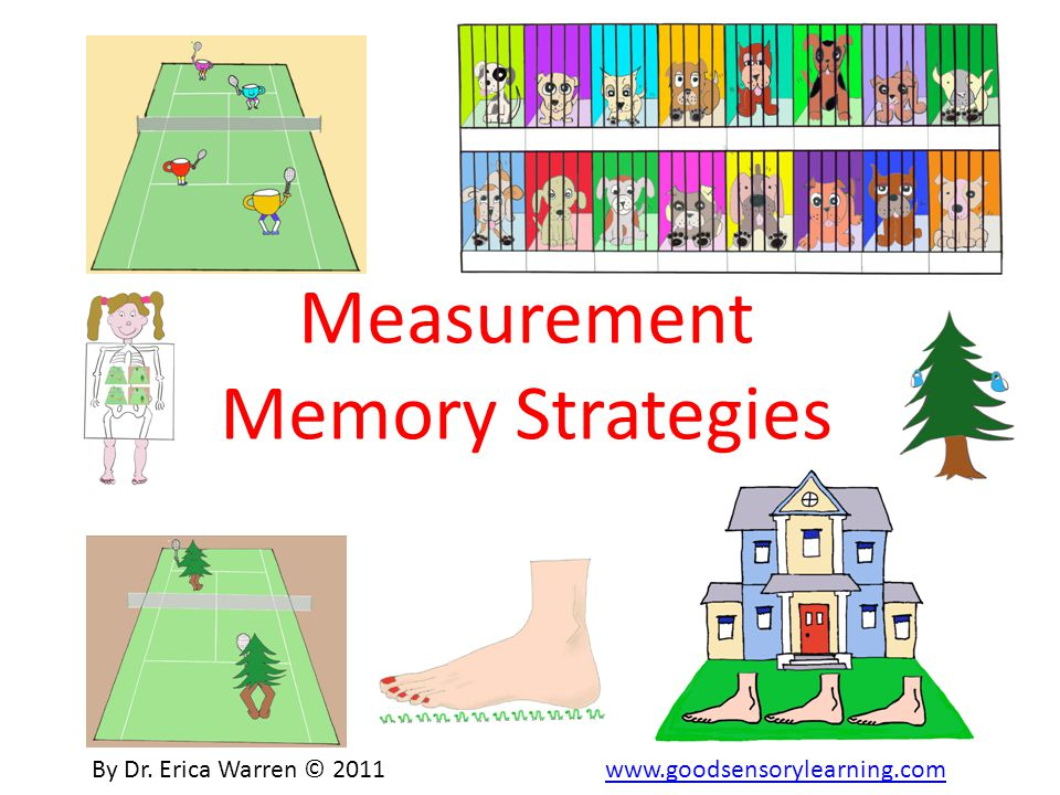 Measurement Memory Strategies By Dr.