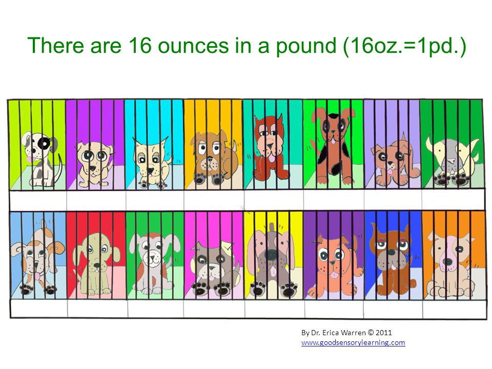 There are 16 ounces in a pound (16oz.=1pd.) By Dr. Erica Warren © 2011 www.goodsensorylearning.com