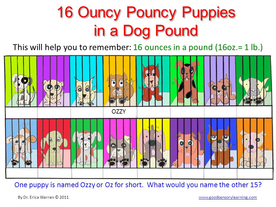 16 Ouncy Pouncy Puppies in a Dog Pound This will help you to remember: 16 ounces in a pound (16oz.= 1 lb.) One puppy is named Ozzy or Oz for short.
