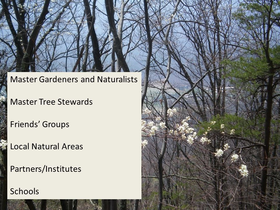 Master Gardeners and Naturalists Master Tree Stewards Friends' Groups Local Natural Areas Partners/Institutes Schools