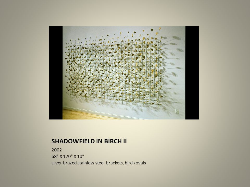 SHADOWFIELD IN BIRCH II 2002 68 X 120 X 10 silver brazed stainless steel brackets, birch ovals