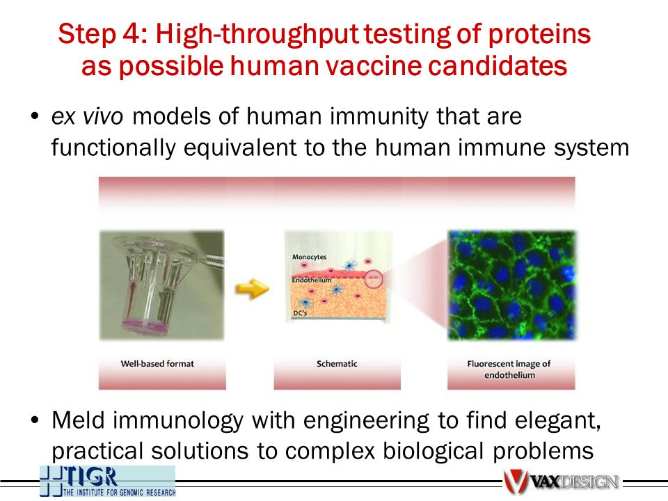 ex vivo models of human immunity that are functionally equivalent to the human immune system Meld immunology with engineering to find elegant, practic