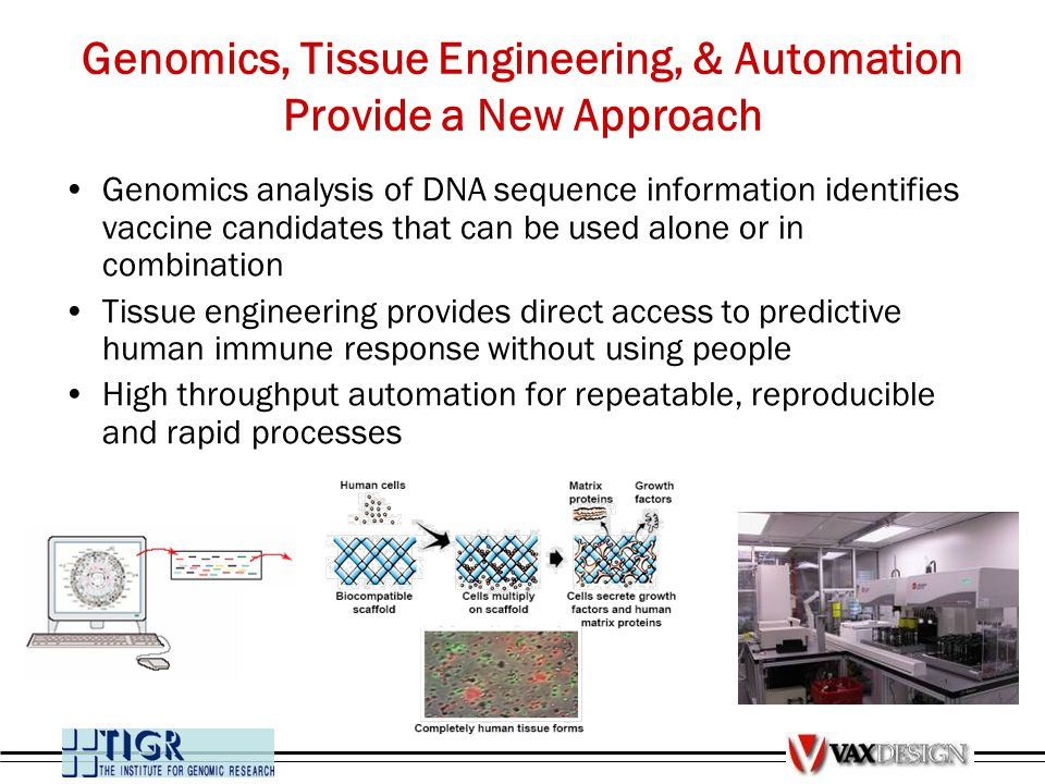 Genomics, Tissue Engineering, & Automation Provide a New Approach Genomics analysis of DNA sequence information identifies vaccine candidates that can