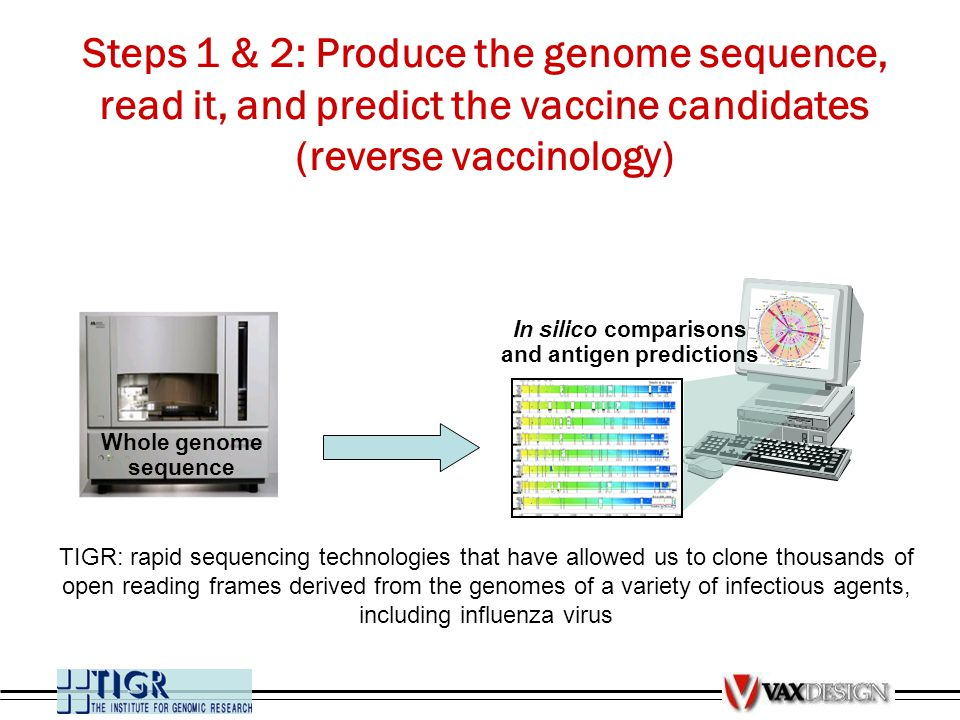 Steps 1 & 2: Produce the genome sequence, read it, and predict the vaccine candidates (reverse vaccinology) Whole genome sequence In silico comparison