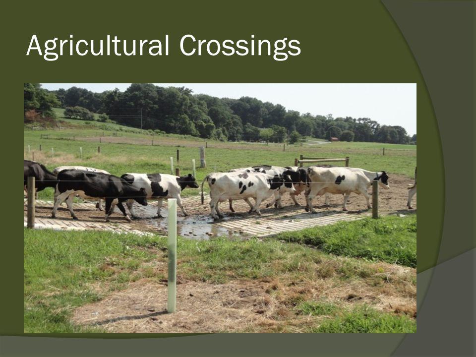 Agricultural Crossings