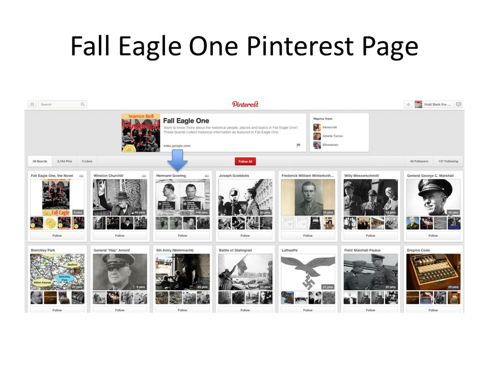 Fall Eagle One Pinterest Page
