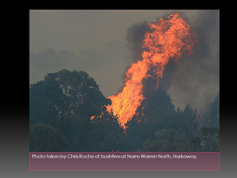 Photo taken by Chris Roche of bushfires at Narre Warren North, Harkaway.
