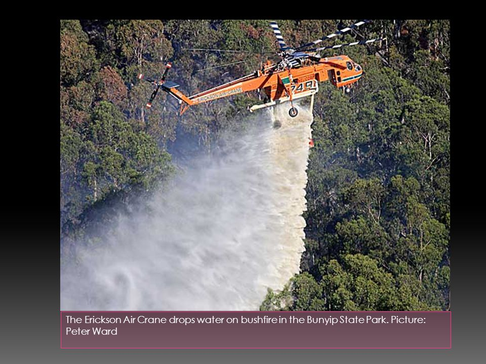 The Erickson Air Crane drops water on bushfire in the Bunyip State Park. Picture: Peter Ward
