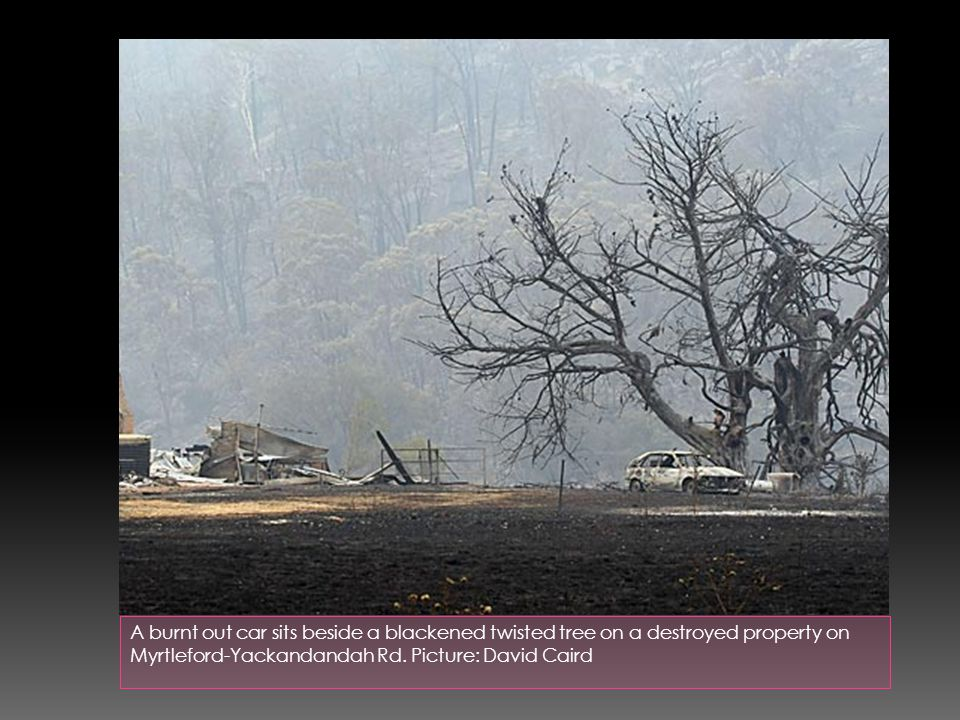 A burnt out car sits beside a blackened twisted tree on a destroyed property on Myrtleford-Yackandandah Rd.