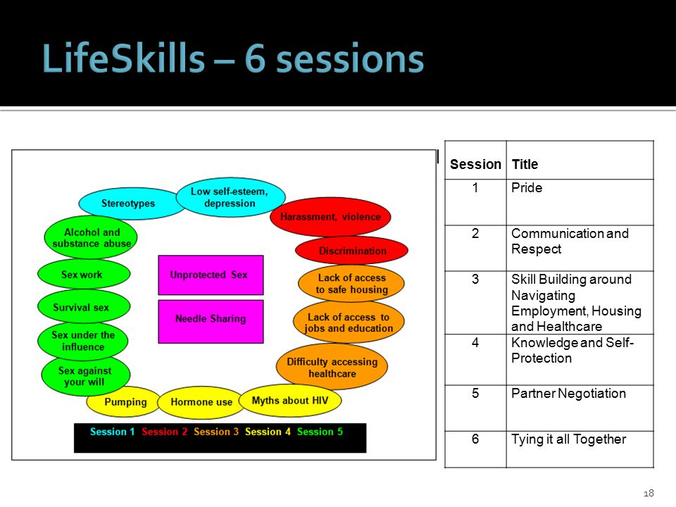 18 SessionTitle 1Pride 2Communication and Respect 3Skill Building around Navigating Employment, Housing and Healthcare 4Knowledge and Self- Protection 5Partner Negotiation 6Tying it all Together