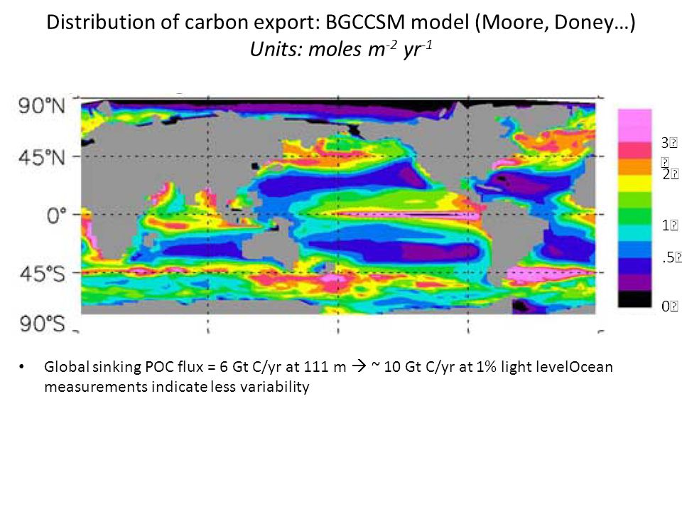 Distribution of carbon export: BGCCSM model (Moore, Doney…) Units: moles m -2 yr -1 Global sinking POC flux = 6 Gt C/yr at 111 m  ~ 10 Gt C/yr at 1% light levelOcean measurements indicate less variability