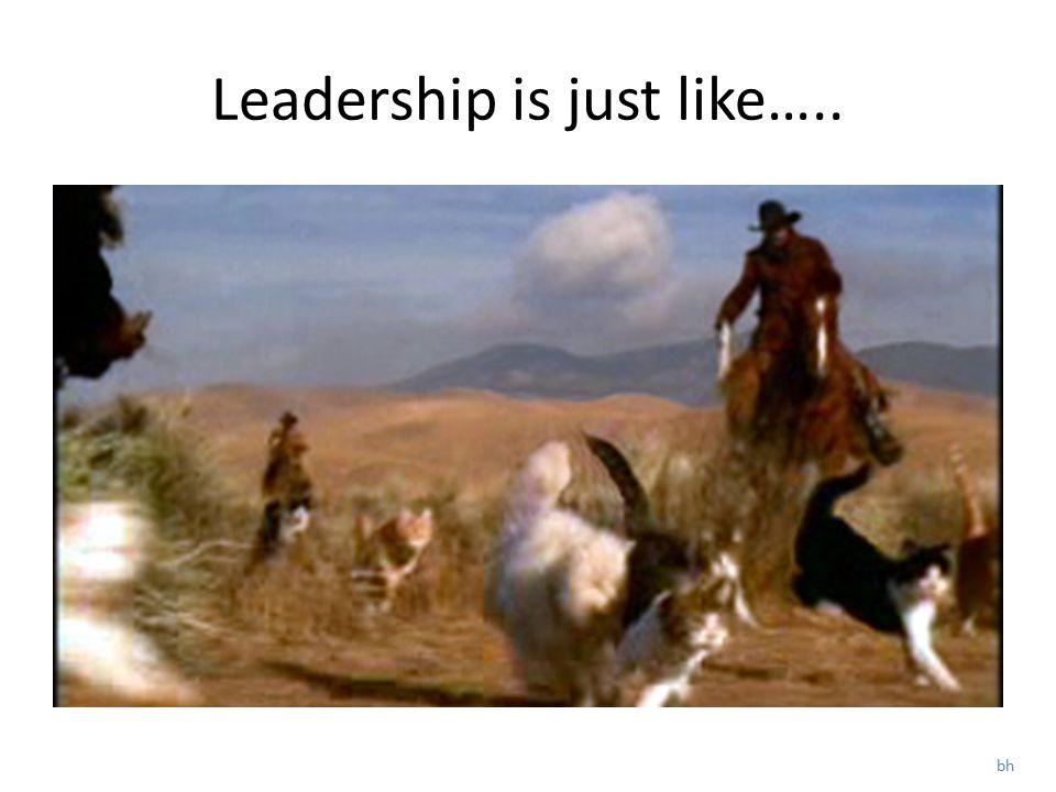 Experienced Cat Herders! Bill Hoppins Dot Negroponte s Warren Phillips all