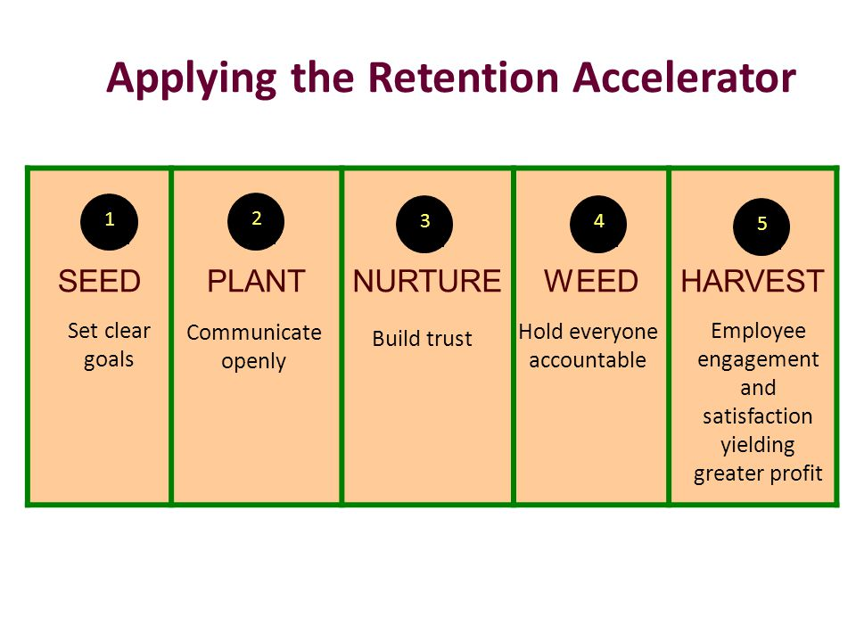 Applying the Retention Accelerator SEEDPLANTNURTUREWEEDHARVEST 1 2 34 5 Set clear goals Communicate openly Build trust Hold everyone accountable Employee engagement and satisfaction yielding greater profit