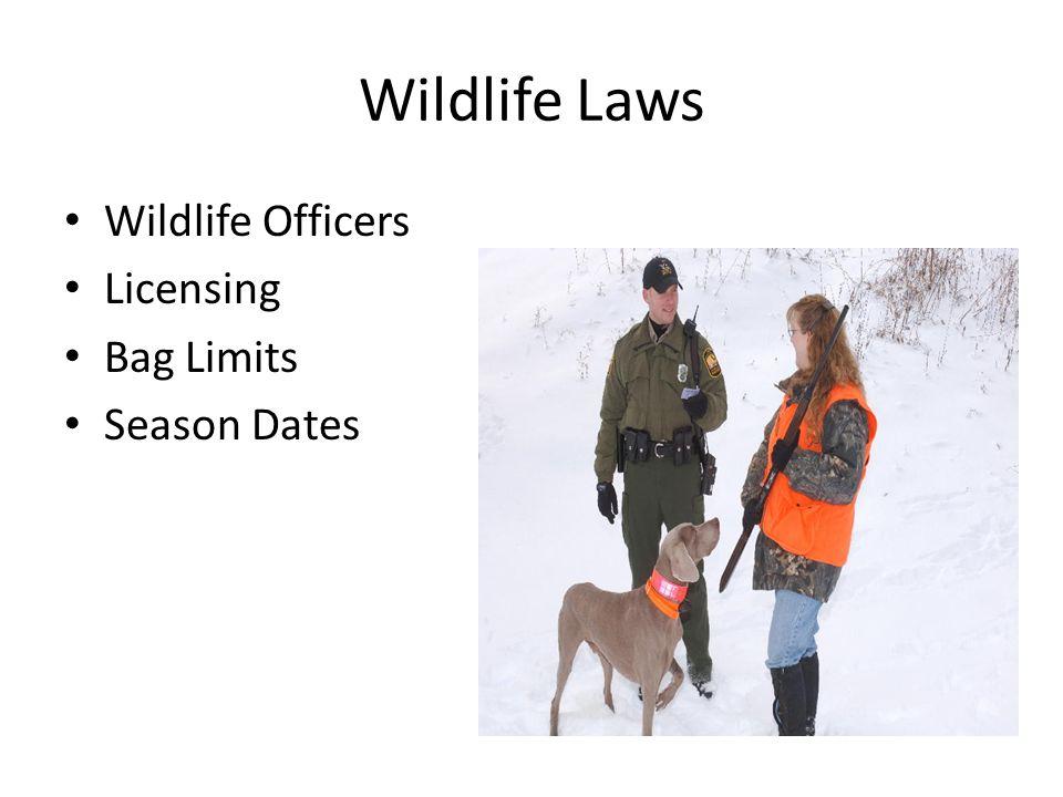 Wildlife Laws Wildlife Officers Licensing Bag Limits Season Dates