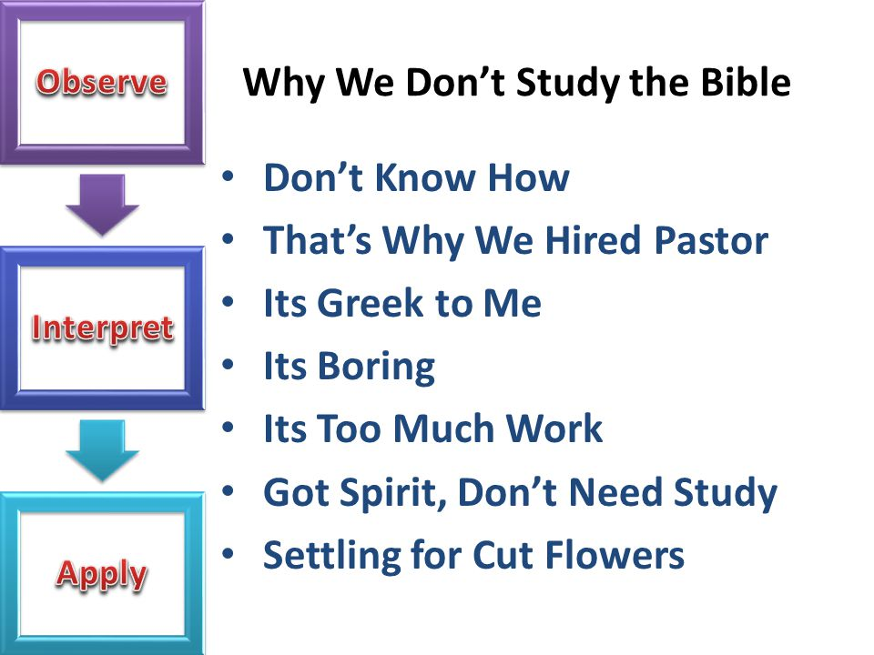 Why We Don't Study the Bible Don't Know How That's Why We Hired Pastor Its Greek to Me Its Boring Its Too Much Work Got Spirit, Don't Need Study Settl