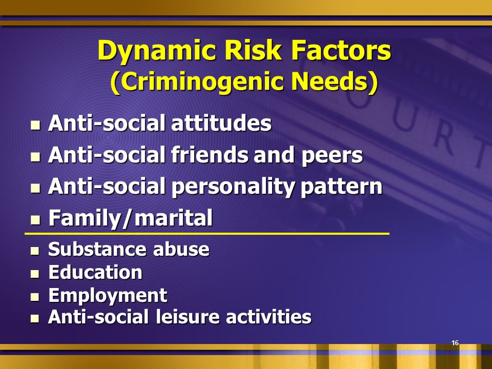 16 Dynamic Risk Factors (Criminogenic Needs) Anti-social attitudes Anti-social attitudes Anti-social friends and peers Anti-social friends and peers Anti-social personality pattern Anti-social personality pattern Family/marital Family/marital Substance abuse Substance abuse Education Education Employment Employment Anti-social leisure activities Anti-social leisure activities