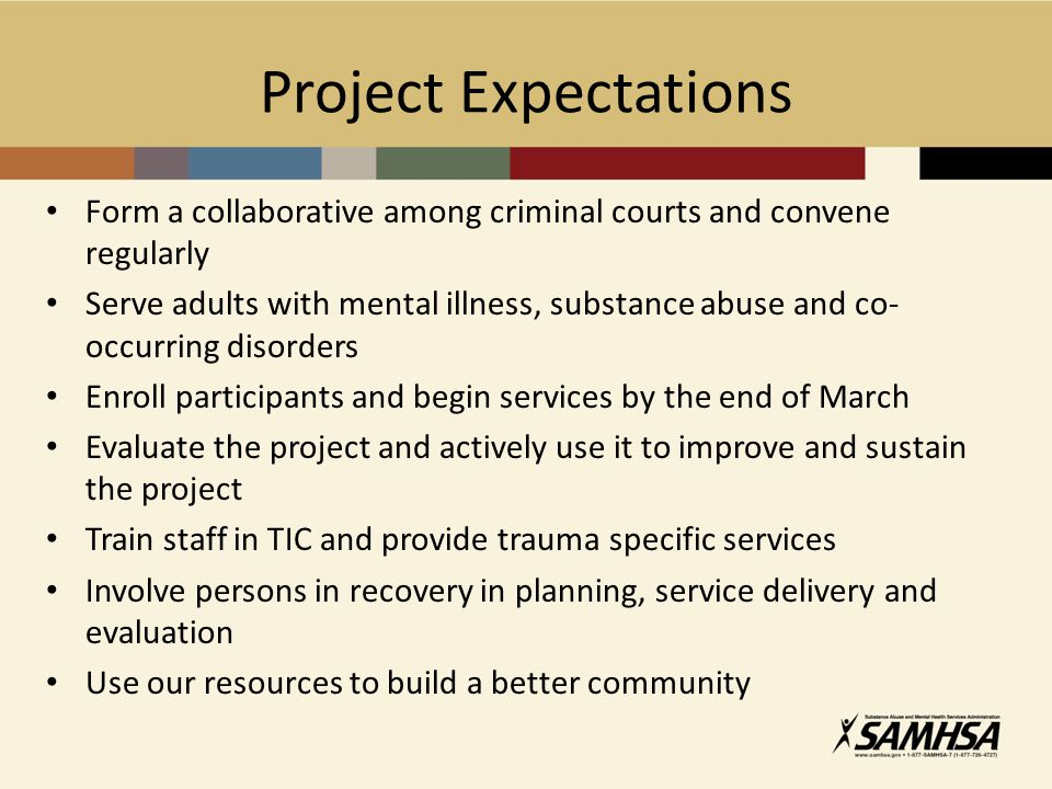 Project Expectations Form a collaborative among criminal courts and convene regularly Serve adults with mental illness, substance abuse and co- occurr