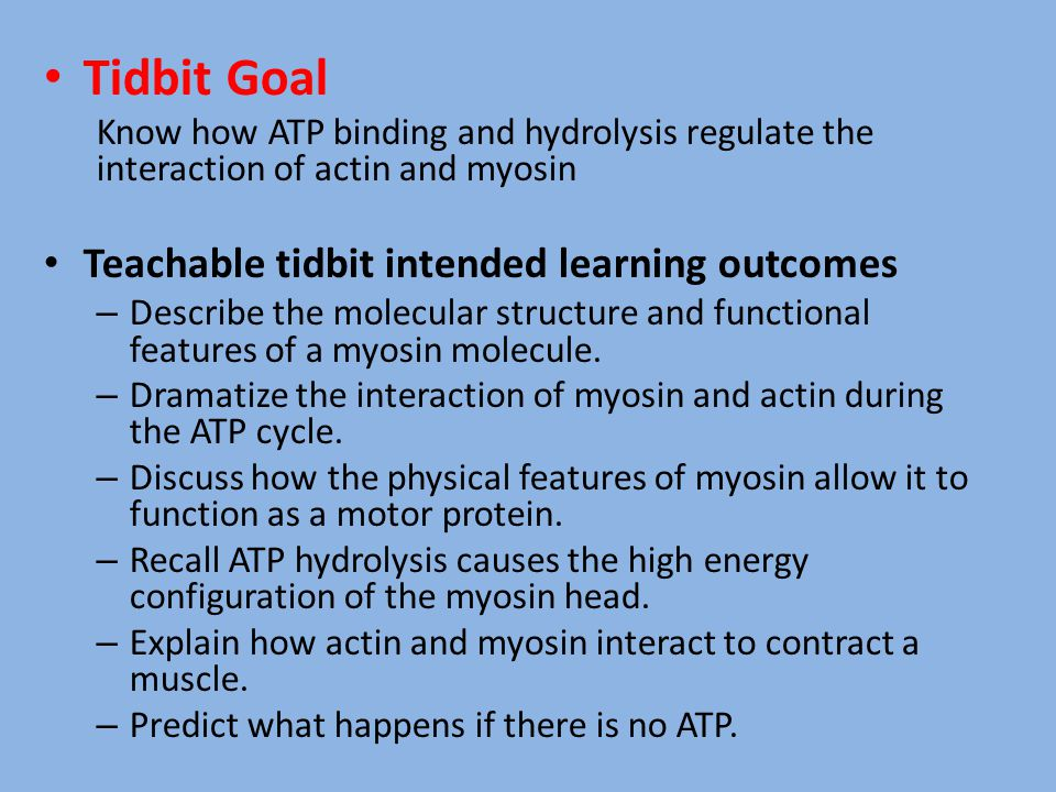 Tidbit Goal Know how ATP binding and hydrolysis regulate the interaction of actin and myosin Teachable tidbit intended learning outcomes – Describe th