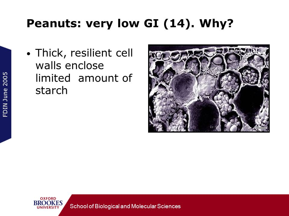 FDIN June 2005 School of Biological and Molecular Sciences Peanuts: very low GI (14). Why? Thick, resilient cell walls enclose limited amount of starc