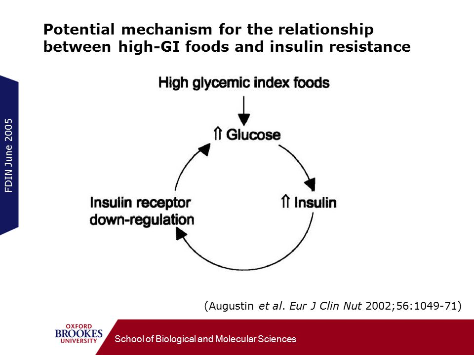 FDIN June 2005 School of Biological and Molecular Sciences Potential mechanism for the relationship between high-GI foods and insulin resistance (Augustin et al.