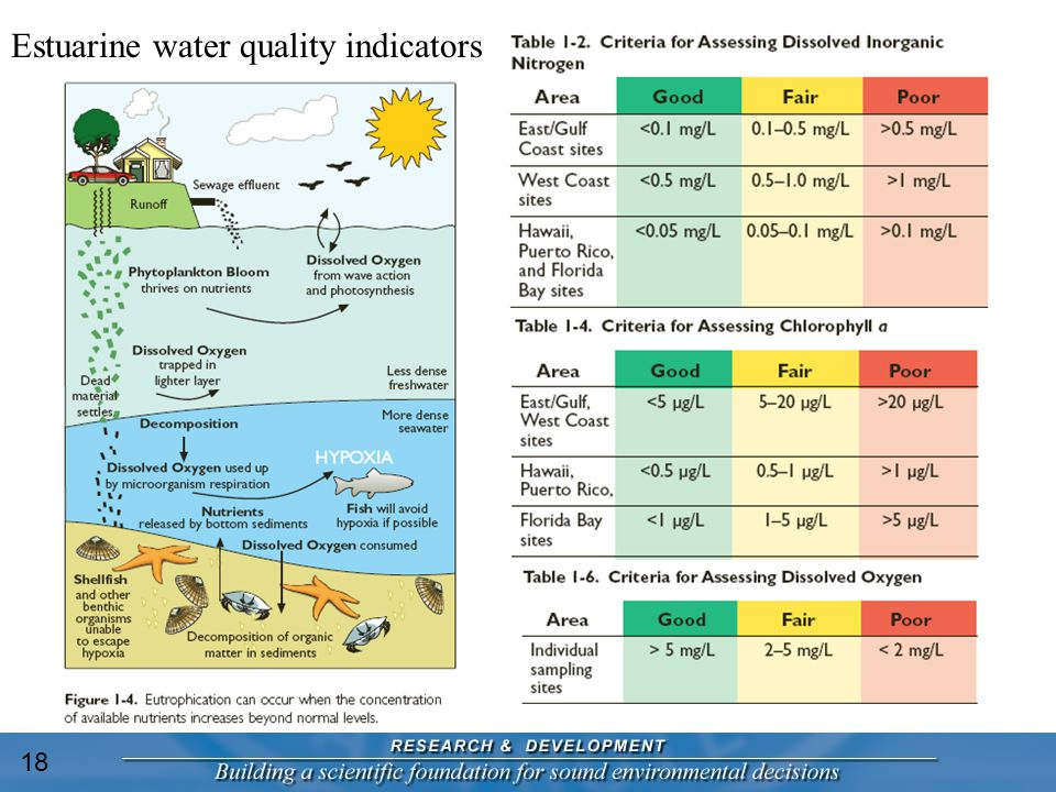 Estuarine water quality indicators 18