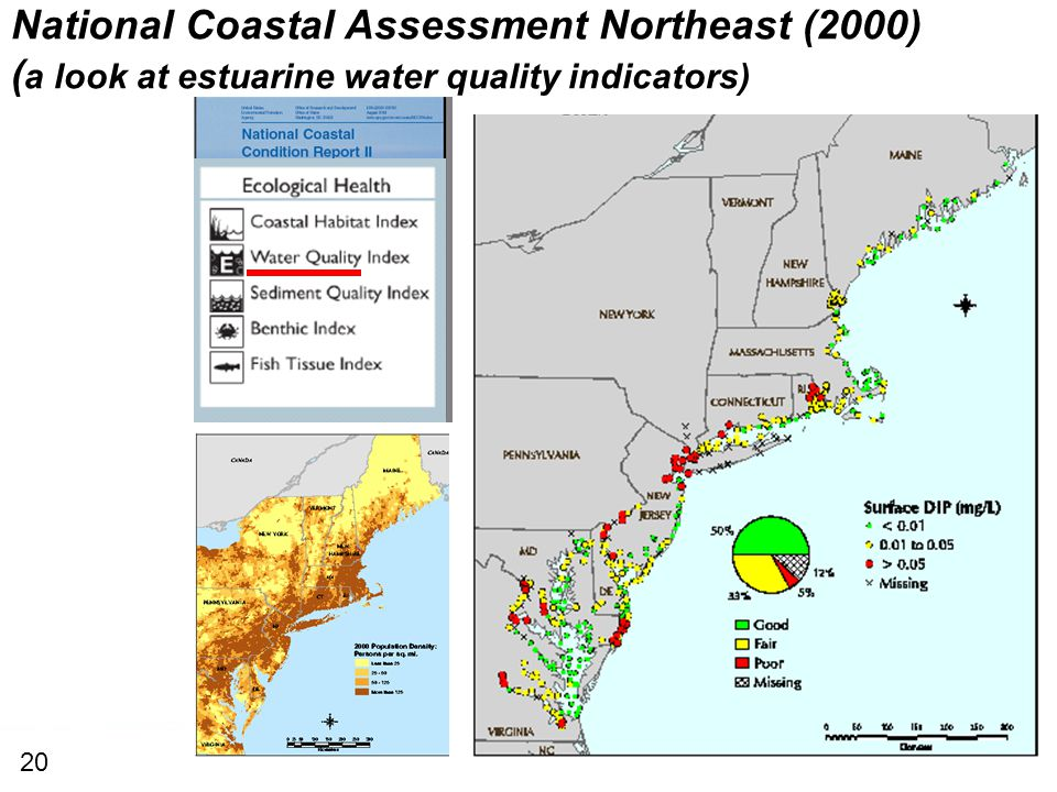 National Coastal Assessment Northeast (2000) ( a look at estuarine water quality indicators) 20