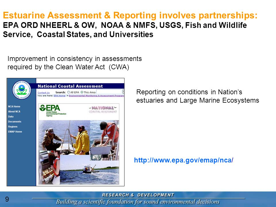 Estuarine Assessment & Reporting involves partnerships: EPA ORD NHEERL & OW, NOAA & NMFS, USGS, Fish and Wildlife Service, Coastal States, and Universities http://www.epa.gov/emap/nca/ Reporting on conditions in Nation's estuaries and Large Marine Ecosystems Improvement in consistency in assessments required by the Clean Water Act (CWA) 9
