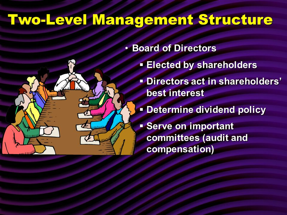Board of DirectorsBoard of Directors  Elected by shareholders  Directors act in shareholders' best interest  Determine dividend policy  Serve on important committees (audit and compensation) Two-Level Management Structure