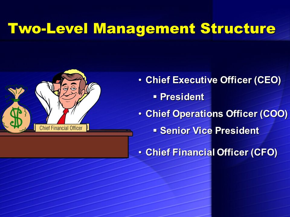 Two-Level Management Structure Corporate OfficersCorporate Officers  Responsible for: Day-to-day operations Day-to-day operations Making the company profitable Making the company profitable