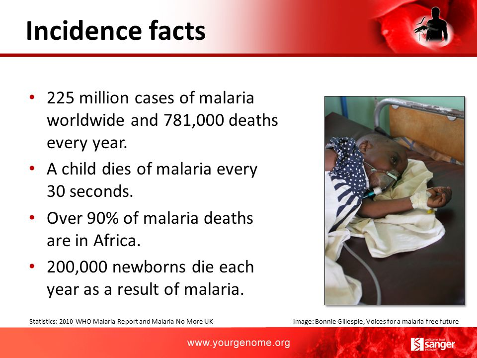 225 million cases of malaria worldwide and 781,000 deaths every year. A child dies of malaria every 30 seconds. Over 90% of malaria deaths are in Afri