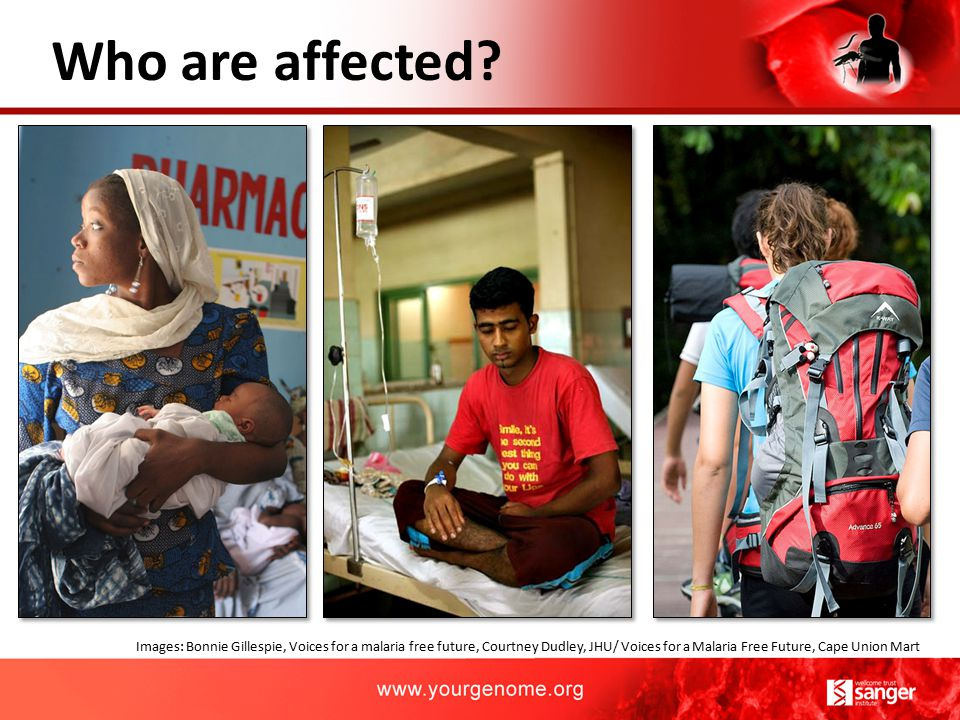 Who are affected? Images: Bonnie Gillespie, Voices for a malaria free future, Courtney Dudley, JHU/ Voices for a Malaria Free Future, Cape Union Mart