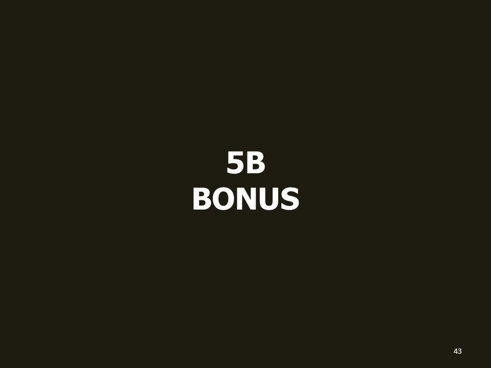 5B BONUS 43