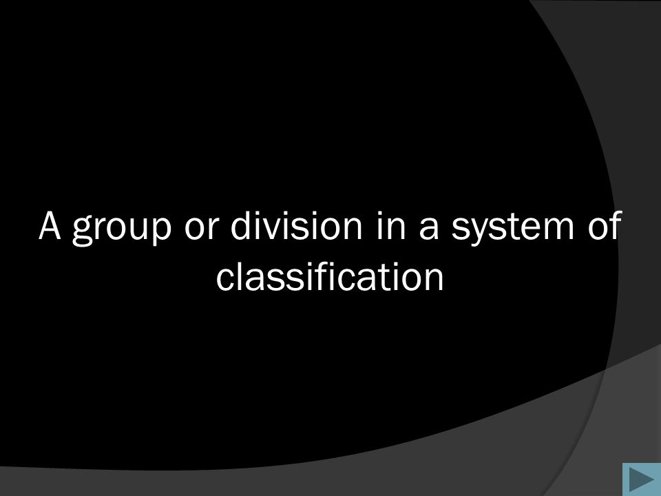 A group or division in a system of classification