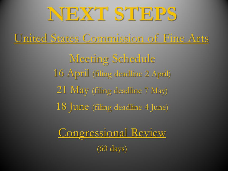 NEXT STEPS Meeting Schedule 16 April (filing deadline 2 April) 21 May (filing deadline 7 May) 18 June (filing deadline 4 June) United States Commissio