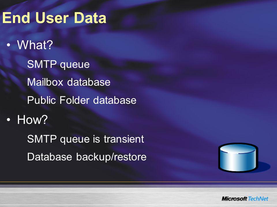 End User Data What.SMTP queue Mailbox database Public Folder database How.