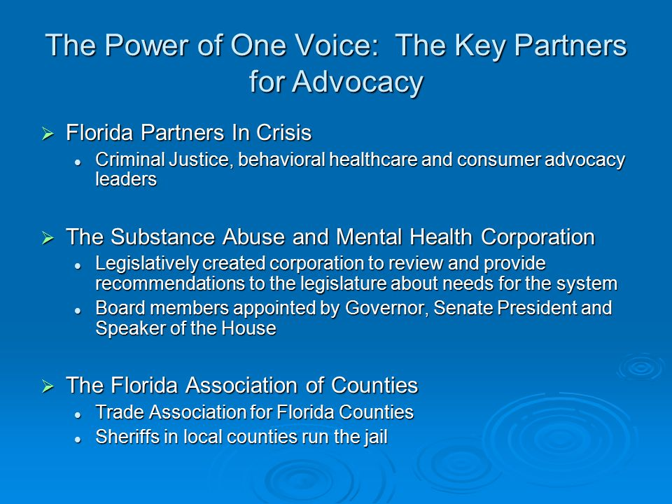 The Power of One Voice: The Key Partners for Advocacy  Florida Partners In Crisis Criminal Justice, behavioral healthcare and consumer advocacy leaders Criminal Justice, behavioral healthcare and consumer advocacy leaders  The Substance Abuse and Mental Health Corporation Legislatively created corporation to review and provide recommendations to the legislature about needs for the system Legislatively created corporation to review and provide recommendations to the legislature about needs for the system Board members appointed by Governor, Senate President and Speaker of the House Board members appointed by Governor, Senate President and Speaker of the House  The Florida Association of Counties Trade Association for Florida Counties Trade Association for Florida Counties Sheriffs in local counties run the jail Sheriffs in local counties run the jail